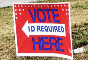 voteridlawnsign
